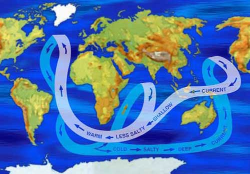 Vertical circulation marine science picture gumiabroncs Images